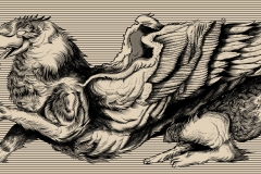 Griffin-Skateboards-drawn-by-Joe-Tamponi-Creepy-Funny-llustrations-inspired-by-punk-rock-surfing-and-skateboarding-world